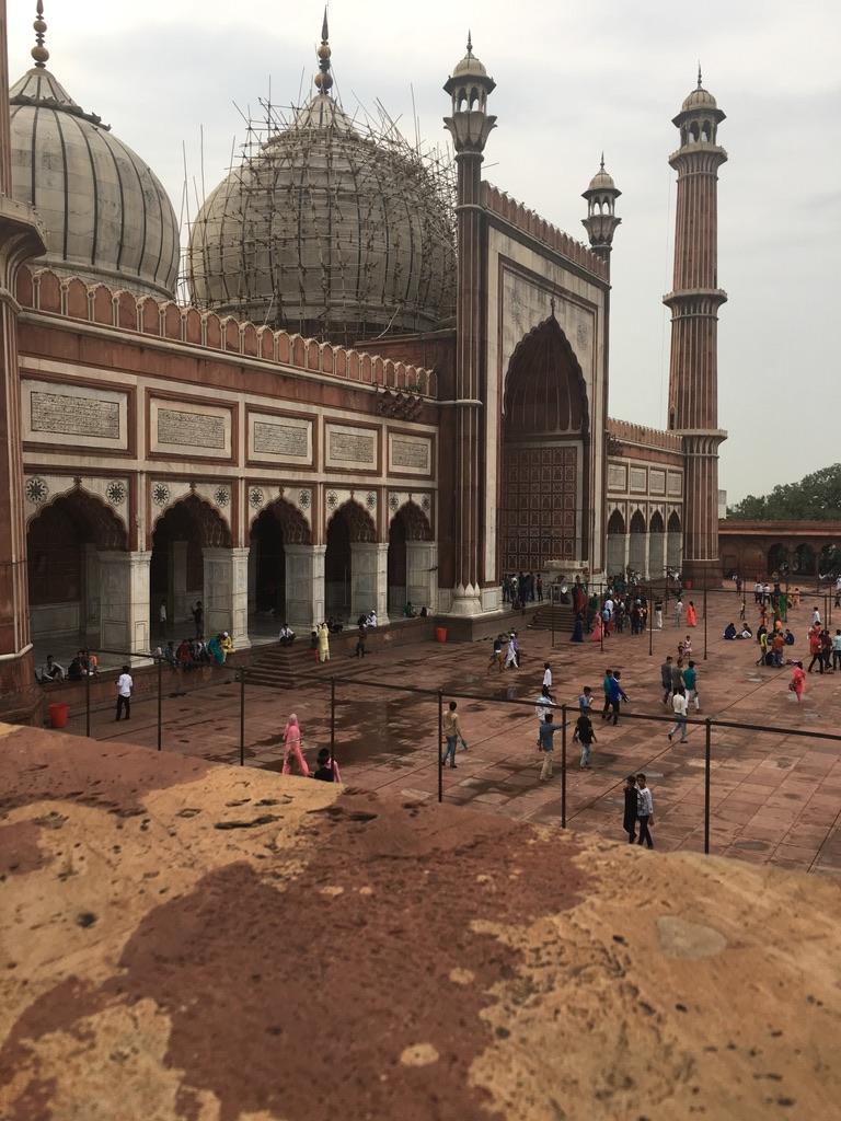 Mi experiencia en Nueva Delhi