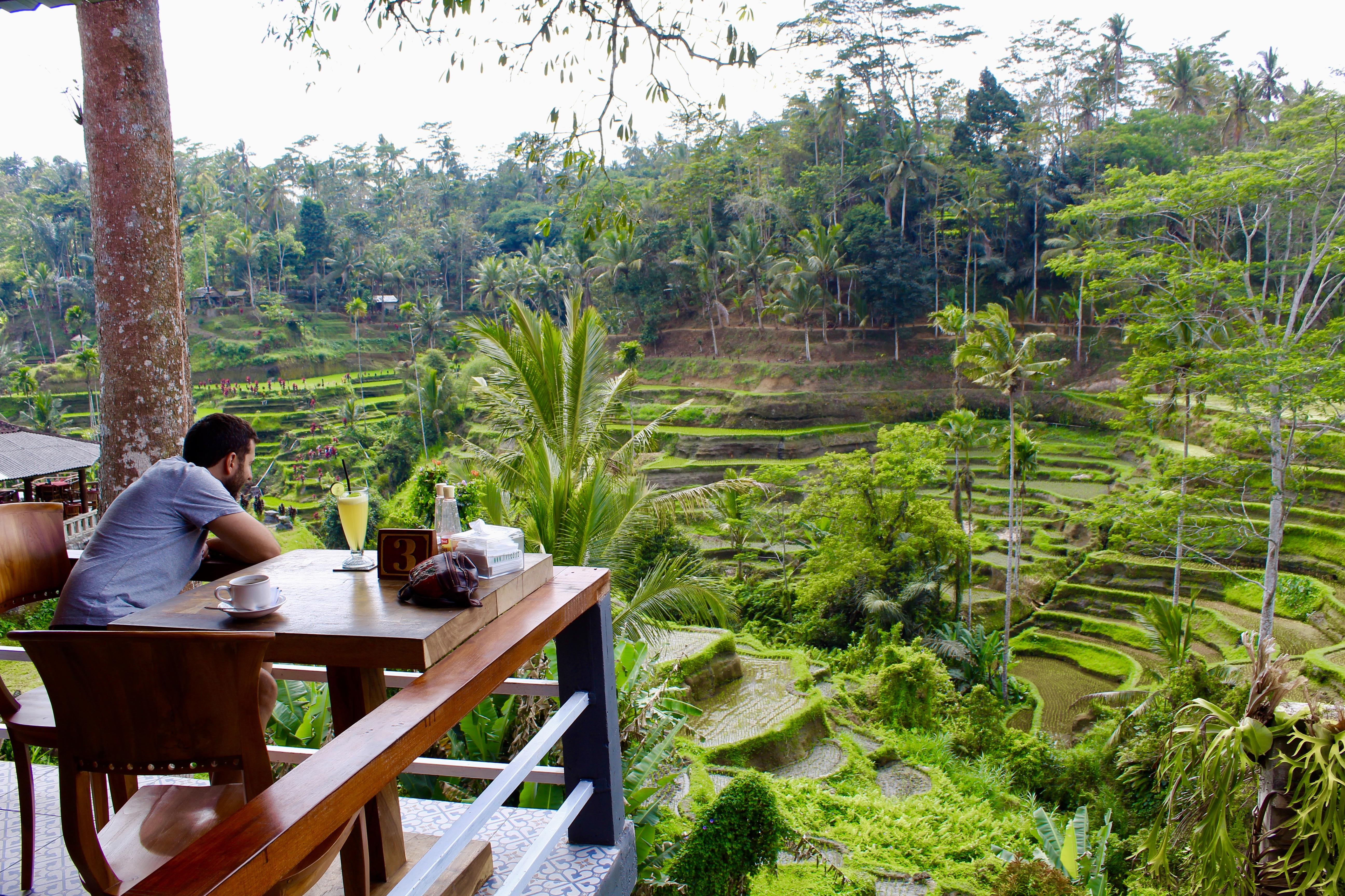 Terrazas de arroz Tegallalang en Bali