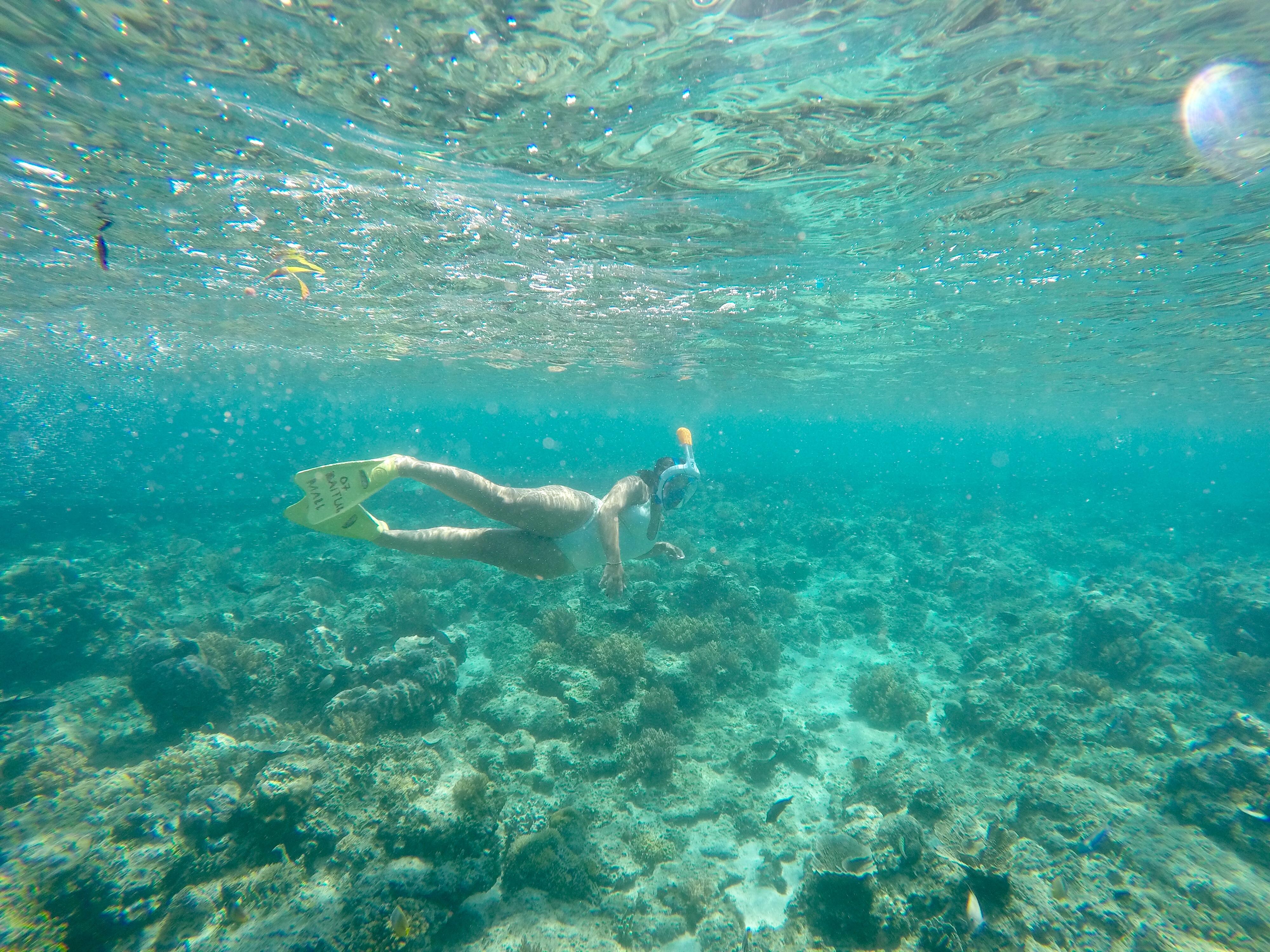 Snorkel en Gili Trawangan.