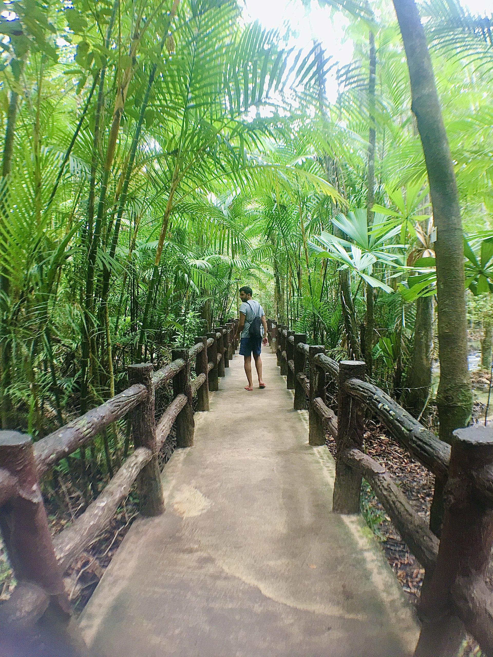 Hot Spring Water y Emerald Pool en Krabi