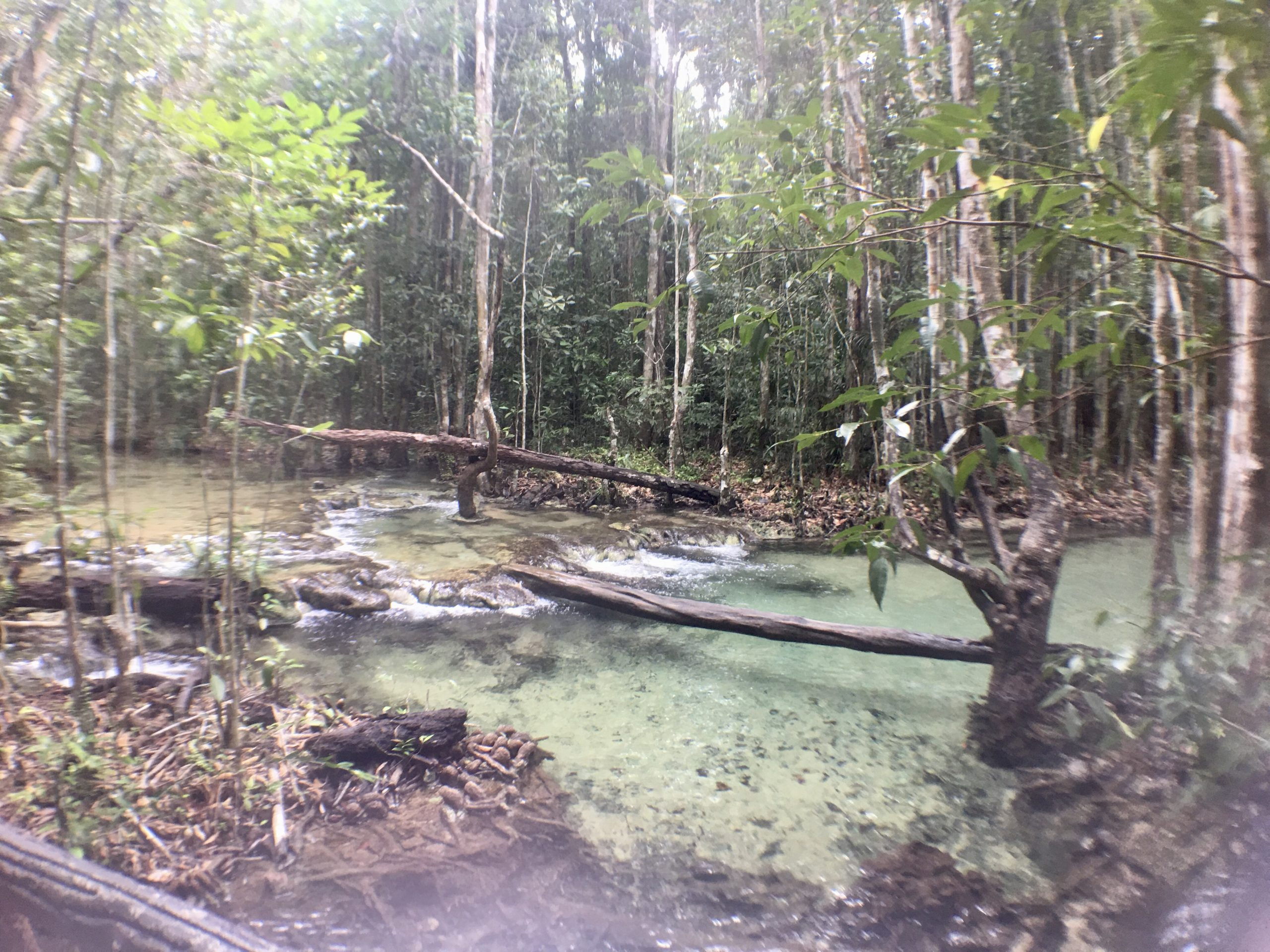 Hot Spring Water y Emerald Pool en Krabi
