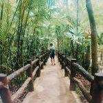 Emerald Pool y Hot Spring Water de Krabi